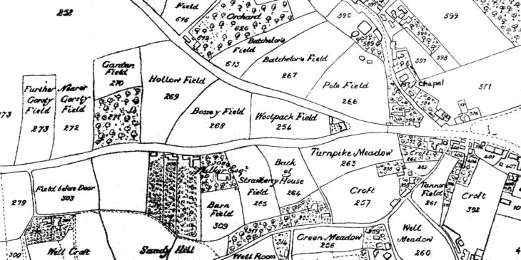 Pendleton Township Map 1815 - Plots 264 and 265 where Belmont would be built.